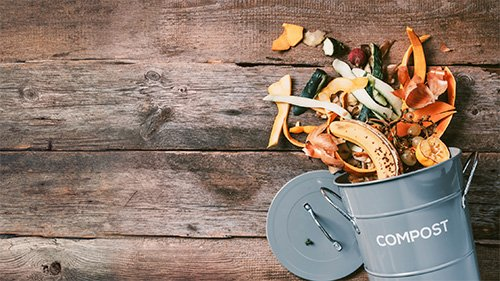 What Can I Compost With WasteWell?
