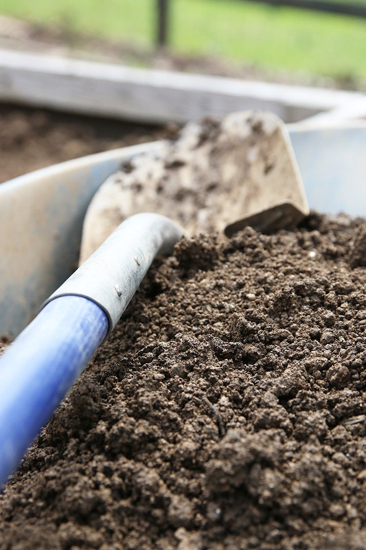 How To Know Where To Put Your Compost Bin